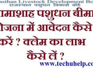 [फॉर्म] Rajasthan Bhamashah Pashu Bima Yojana 2018 | भामाशाह पशुधन बीमा योजना ऑनलाइन आवेदन