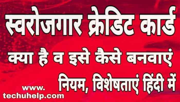 Swarojgar Credit Card Yojana Kya Hai in Hindi - स्वरोजगार क्रेडिट कार्ड योजना क्या है