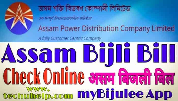 Assam Bijli Bill in Hindi
