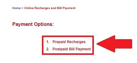 MSPDCL Bill Payment System