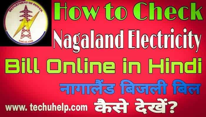 How to Check Nagaland Bijli Bill in Hindi