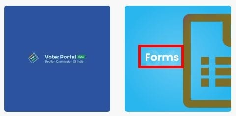 Click on Forms Options