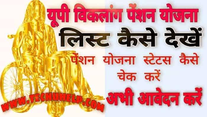 How to Check Viklang Pension Yojana List in Hindi